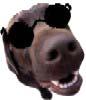 Tafkafs avatar