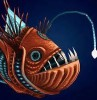 LittleFishs avatar